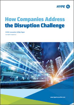cover page of the report how companies address the disruption challenge